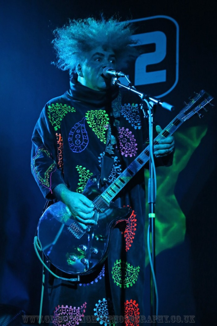 The Melvins (13)