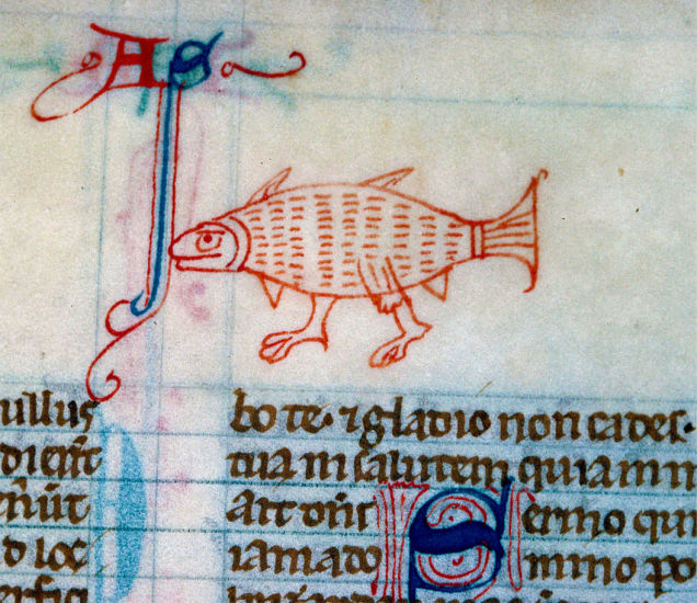 Walking-Fish-from-a-13th-century-English-Bible