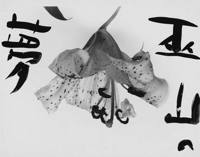 Araki-Marvelous-Tales-of-Black-Ink-42-96-Custom
