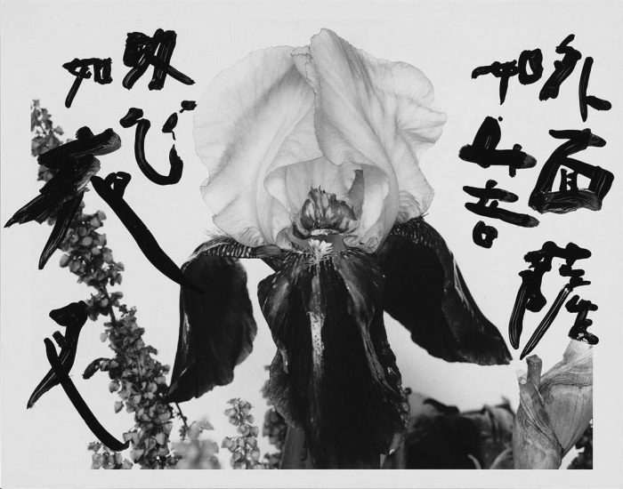 Araki-Marvelous-Tales-of-Black-Ink-46-96-Custom