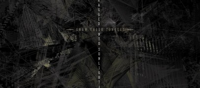 Terror Marches On:  DRAGGED INTO SUNLIGHT & GNAW THEIR TONGUES Collaboration Review + Stream
