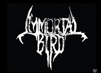 Mixtape of the Day: IMMORTAL BIRD
