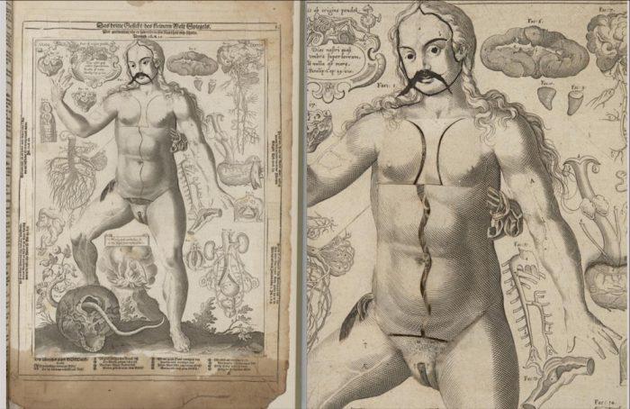 1661-pop-up-book-14