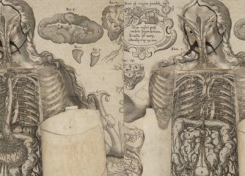 Art Meets Medicine:<br/> A Pop Up Book From The 17th Century