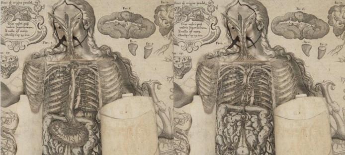 1661-pop-up-book-19-700x439