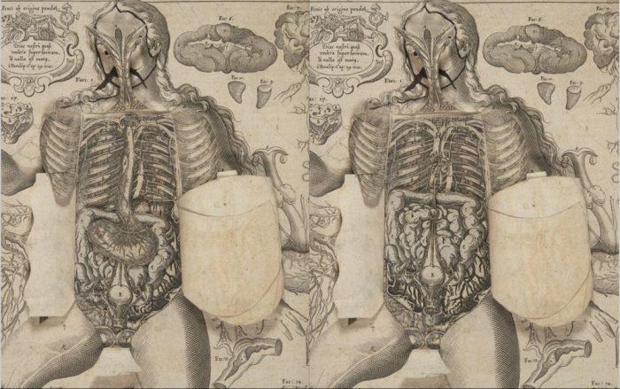 1661-pop-up-book-19