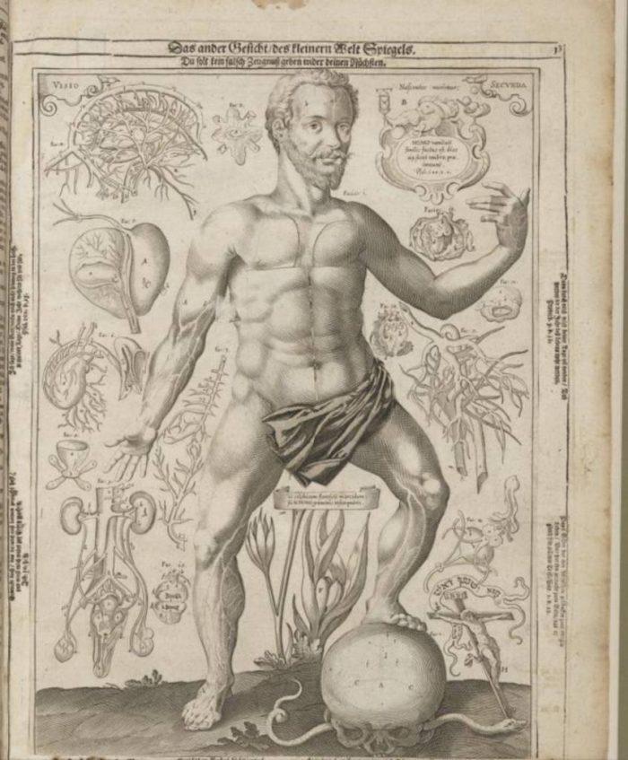 1661-pop-up-book-5-846x1024