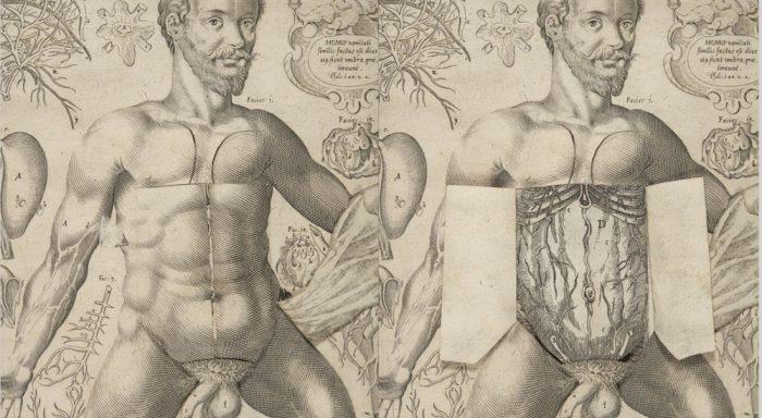 1661-pop-up-book-6