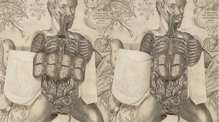1661-pop-up-book-7