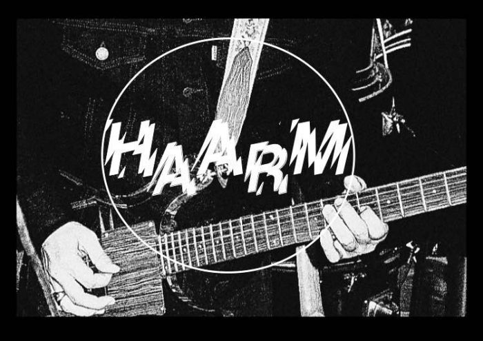 haarm - fhaussessioncover