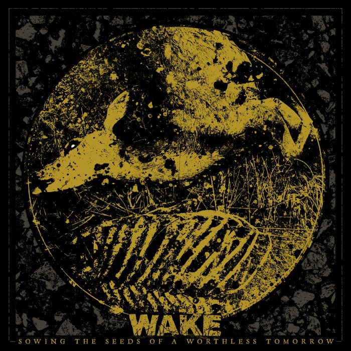 wake_stoawt_1500x1500