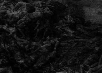 CVLT Nation 2 Song Premiere: DARK CIRCLES // ABSTRACTER Split