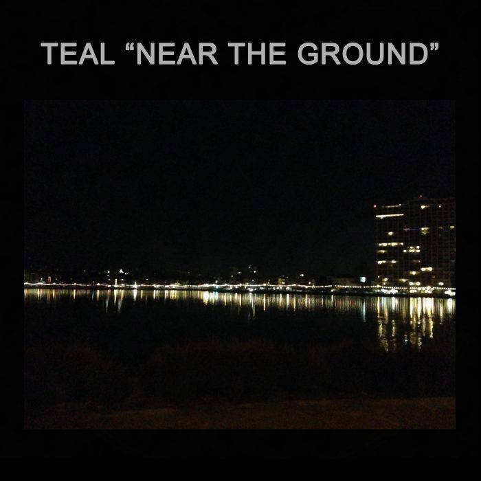 teal near the ground