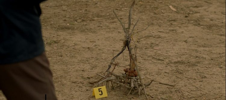 Stick hex from Episode 1 of True Detective.